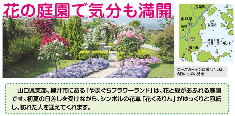 花の庭園で気分も満開 ~山口県柳井市を散策 ~広島の賃貸物件検索サイト スマイミーコラム